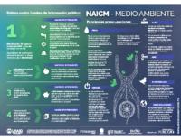 NAICM 1